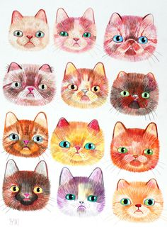12 cat faces original illustration on paper by QueenOfTheCats, $40.00