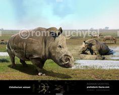 Prehistoric Creatures, Rhinoceros, Fauna, Jurassic Park, Animal Drawings, Mammals, North America, Fighter Jets, Illustration Art