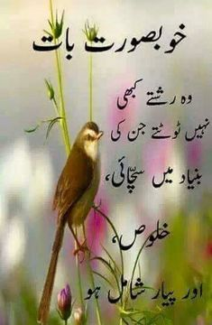 Love Poetry Images, Love Quotes Poetry, Love Poetry Urdu, Morning Prayer Quotes, Good Night Quotes, Beautiful Islamic Quotes, Islamic Inspirational Quotes, Sufi Quotes, Urdu Quotes