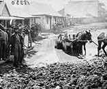 In the early Australian Gold Rush Days, times were tough ~ Photo of Clarke Street.,Hill End, NSW. Australia Day, Western Australia, Primary History, Teaching History, First Fleet, Gothic, Land Of Oz, Gold Rush, Back In The Day