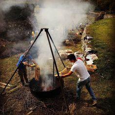 Festa della castagna #fenis #invda #castagnata #igersvalledaosta #autumn
