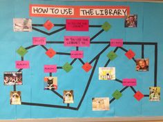 "michelle hukvari on Twitter: ""Fave bulletin board so far - library flow chart with memes #sepolk #iowatl #memes http://t.co/hFjJHlIW2L"""