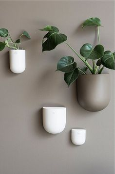 Stylish ceramic wall pot from DBKD for your plants and flowers. House Of Turquoise, O Design, Diy Inspiration, Interior Inspiration, Flower Vases, Flower Pots, Design Online Shop, Beige Walls, Living Room Lighting