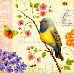 Birds and Bees. Daphne Brissonnet.