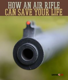 How A Simple Air Rifle Can Save Your Life