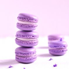 Lavender French Macarons