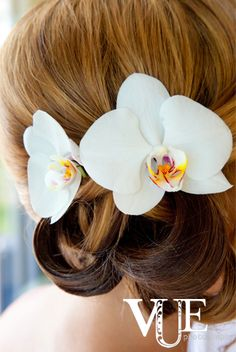 wedding photography - vue photography - real wedding - gimme s'more lollie - bride - getting ready - wedding hairstyle - updo - phalaenopsis orchids