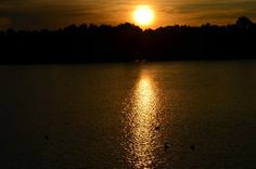 Lilydale Lake in the evening by Ta Boonma Mountain S, Peeps, Ocean, Celestial, Sunset, Outdoor, Beauty, Beautiful, Outdoors