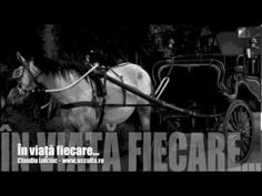 Claudiu Lulciuc - In viata fiecare... Horses, Animals, Animales, Animaux, Animal, Animais, Horse