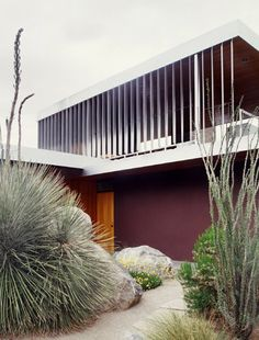 AD Classics: Kaufmann House / Richard Neutra - wonder if the purple wall was Richards choice? Guess not.