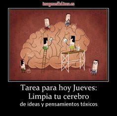 imagen de Tarea para hoy Jueves: Limpia tu cerebro  de ideas y pensamientos tóxicos