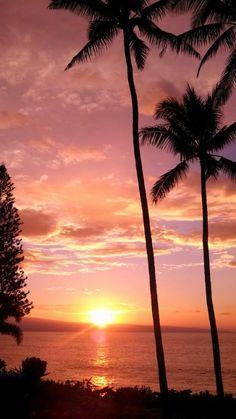 Lahaina Sunset Scene