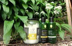 Tiere und Aromatherapie? Jojoba Oil, Shampoo, Organic, Green Clay, Alpacas, Types Of Animals, Small Dogs, Plants, Animales
