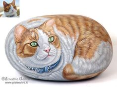 Orange and white cat Painted rock