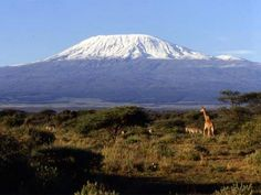 Mount Kilimanjaro....5 climates in one LONG hike!  Do the hike before all the glaciers melt....