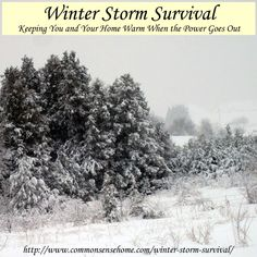 Winter Storm Survival - Keeping You and Your Home Warm When the Power Goes Out - Conserving heat, dressing for warmth, food and water needs, hygiene issues.
