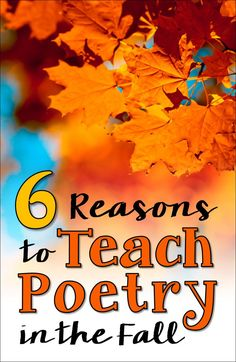 6 Reasons to Teach Poetry in the Fall! Why wait for National Poetry Month in April when you can start teaching your kids to love poetry now! Teaching Poetry, Teaching Writing, Teaching Resources, Teaching Ideas, Kindergarten Poetry, Classroom Resources, Classroom Ideas, Poetry Activities, Autumn Activities