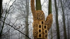 Several Hundred bespoke bird boxes carefully place on ''Trees of Heaven'' are the sculptural installation of artists Jo Joelson and Bruce Gilchrist who have been commissioned for the Royal Borough of Kensington and Chelsea and Islington Council by up projects as part of their Secret Garden Project.