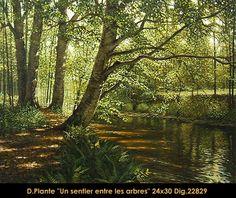 Un Sentier entre les arbres Plants, Pathways, Flora, Plant, Planting