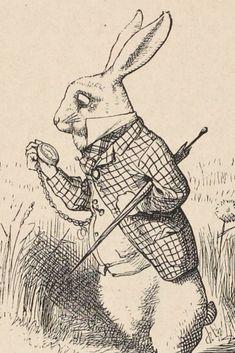 John Tenniel, Lewis Carroll, Art App, Tattoo Sketches, Hare, Films, Loft, Illustrations, Ink
