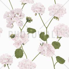 Geranium - white - Tapetit / tapetti - Photowall