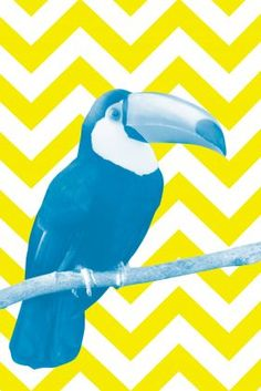 Toucan Canvas in Blue and Yellow from Wall Studio Art