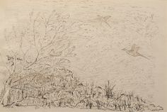 "Pheasants over Moorland by Charles Murray Adamson (1820-1894) Pen and ink drawing on paper In a cream conservation grade mount (matt) ​In good condition, as illustrated ​Drawing: 17.4 x 26.2 cm (visible); mount: 28 x 35.5 cm (11"" x 14"")"
