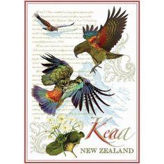 New Zealand Kiwi Gifts Souvenirs Dark Colors, Colours, Souvenir Store, School Murals, Buy Tea, Tea Towels, New Zealand, This Is Us, Kiwi