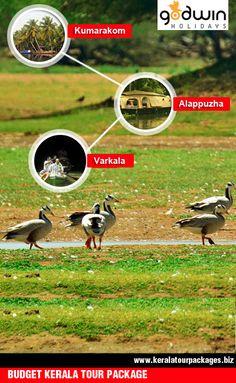 Cruise the backwaters of Kerala then visit the beaches of Alappuzha & experience Kerala Ayurveda at Varkala resort.