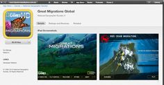 Migrations game app from iTunes https://itunes.apple.com/au/app/great-migrations-global/id401166069?mt=8