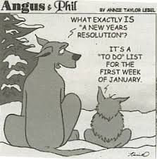 17 Best New Year Resolutions Funny Images New Years Resolution