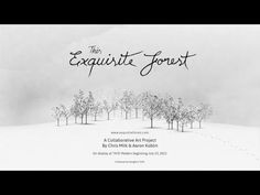 Chris Milk's 'This Exquisite Forest' - http://www.animated-review.blogspot.co.uk/2012/07/chris-milk-this-exquisite-forest.html