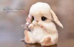 Que hermoso ❤❤ - Animales adorables Baby Animals Super Cute, Cute Baby Bunnies, Cute Stuffed Animals, Cute Little Animals, Cute Funny Animals, Cute Cats, Bunny Bunny, Baby Animals Pictures, Cute Animal Pictures