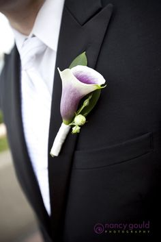 The groom's boutonniere will be a picasso calla lily and white feathers wrapped in charcoal gray ribbon with the stems showing.