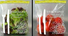 organically grown in okahandja | urban sprout