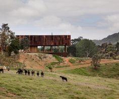 Three New Zealand homes make the shortlist of the World Architecture Festival - Homes To Love