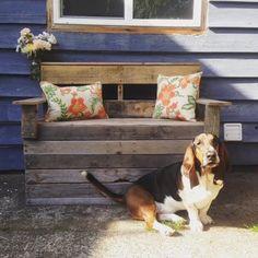 Handmade Bench by Hound & Co.