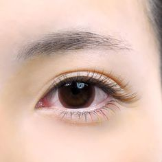 last 3 days! The full August . Korean Eye Makeup, Elegant Makeup, Cool Tones, Hatsune Miku, Makeup Inspo, Eyelash Extensions, Lush, Eyelashes, Make Up