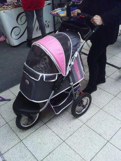 tohle sem prosím ještě neviděla :D psí kočárek... EUROPEAN DogSHOW