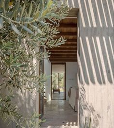 INSPIRATION: If you're going to retire to found your own olive grove, this is the way to do it. Turkish architect @_onurteke_ called on both technology and traditional craftsmanship to bring this passive home to life in harmony with its surroundings. | Photography by Yerçekim Architectural Photography _