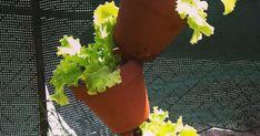 Blog lifestyle sur la déco et le design pour la maison et le jardin, avec plein de DIY, de shopping, et de tests produits...