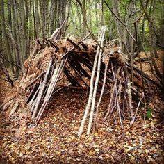 Making forts in the woods survival shelter pinterest for How to make a fort out of wood
