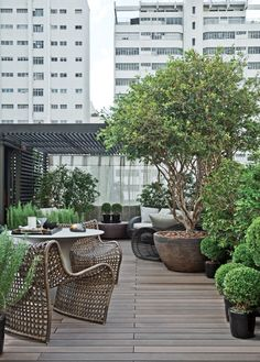 image via: denisebarretto.com.br A well-designed rooftop garden features shade, wind-tolerant plants and quality outdoor furniture.  Choose sculptural plants and large pots for added visual appeal.