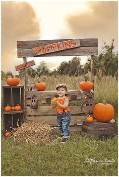 I got to photograph four wonderful families in one afternoon for these pumpkin stand mini sessions! The sessions were quick, but fun! Pumpkin Pictures, Fall Pictures, Fall Photos, Halloween Mini Session, Photo Halloween, Mini Session Themes, Fall Mini Sessions, Halloween Photography, Autumn Photography