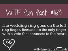 WTF-fun-facts : funny & weird facts on we heart it / visual bookmark #32306104