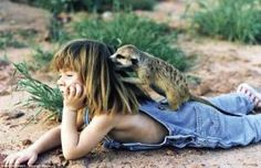 Watching the world go by: The young child relaxes with her meerkat friend by lucille