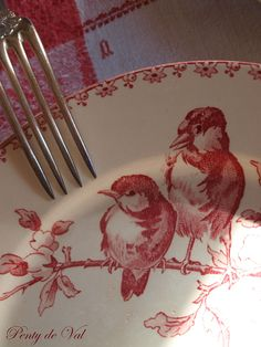 lovely little birds on red and white transfer ware plate