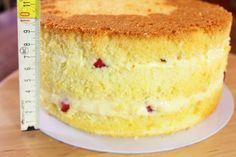 chiffon ricetta base, fluffosa, torta alta 10 cm