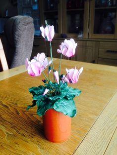Sugar Flowers, Vase, Plants, Home Decor, Flora, Interior Design, Vases, Home Interior Design, Plant
