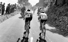 Raymond Poulidor and Jacques Anquetil, 1964 Tour de France.